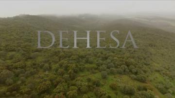 DEHESA (Trailer Español)
