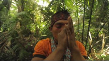 Ancestral Secrets. Keepers of Indigenous Medicine